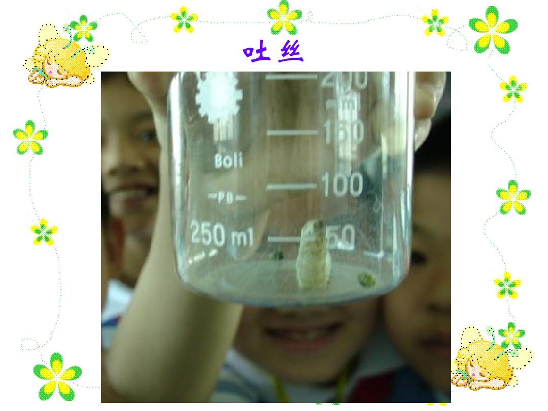 2 给蚕宝宝记日记PPT课件和第二课时教案的第11张ppt图片预览