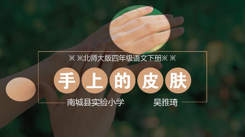 手上的皮肤公开课课件的第1张ppt图片预览