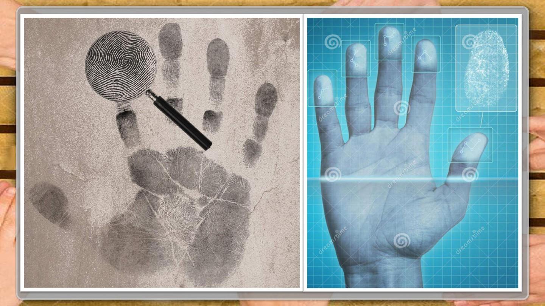手上的皮肤公开课课件的第6张ppt图片预览