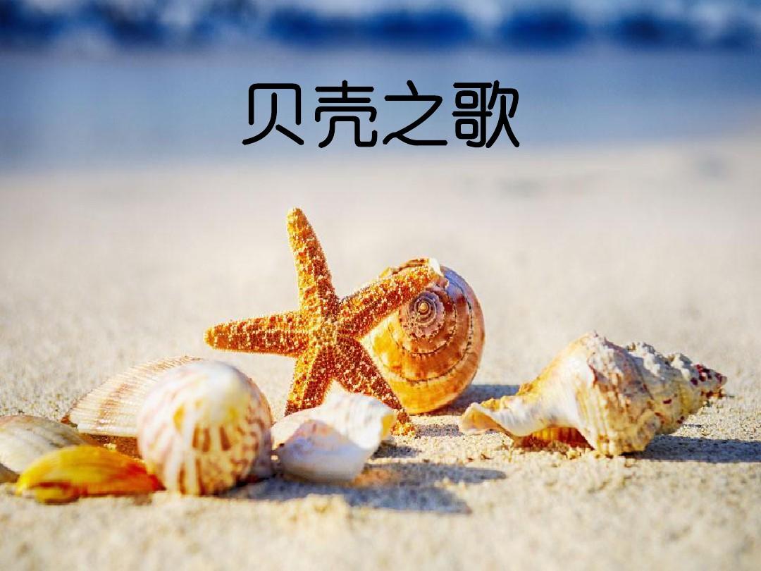 (演唱)贝壳之歌PPT课件和优质教案设计的第1张ppt图片预览