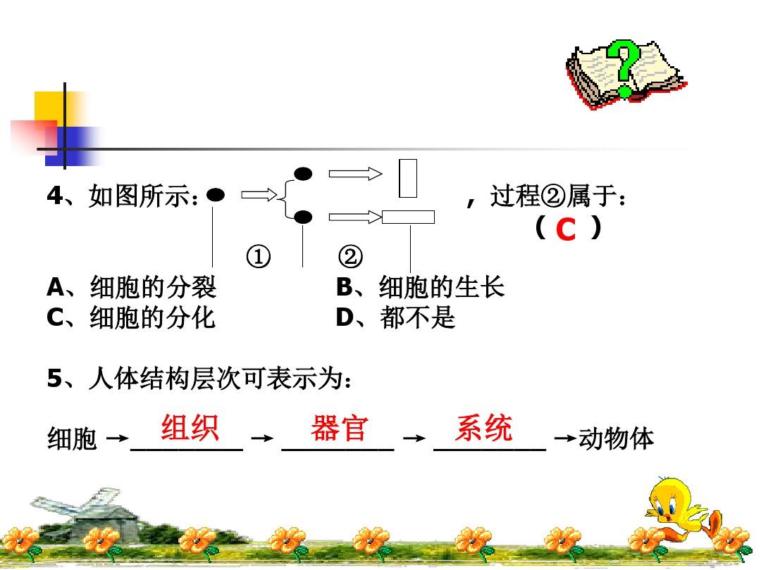 第一节 基因控制生物的性状PPT课件和教学设计(第一课时)的第22张ppt图片预览