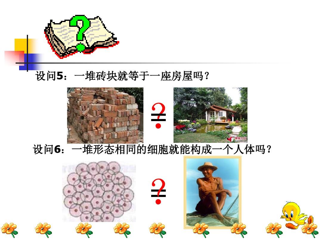 第一节 基因控制生物的性状PPT课件和教学设计(第一课时)的第4张ppt图片预览